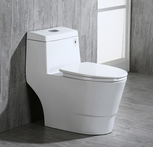WoodBridge T0001 one piece toilet